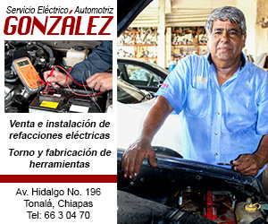 servicio_electrico_gonzalez_300x250