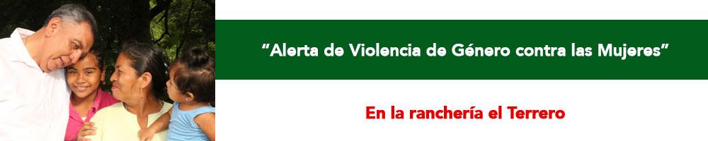 violenciagenerobanner